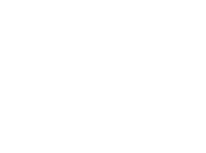 monster bear logo